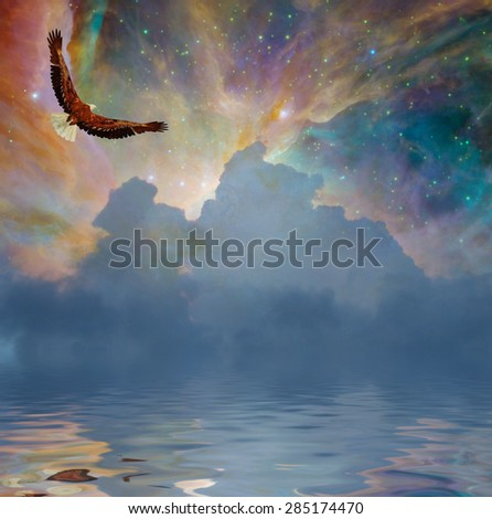 Eagle in flight over water with starry sky - stock photo