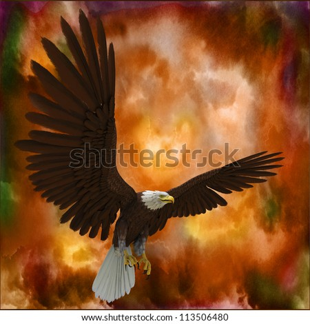 eagle in the storm - stock photo
