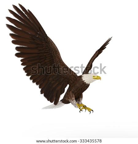 eagle landing - stock photo