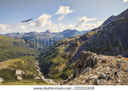 Eagle soaring about a canyon in the high mountains of British Columbia on a summer day. - stock photo