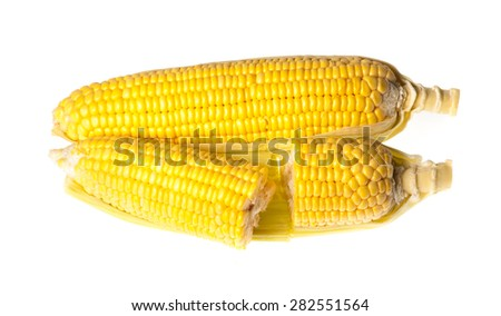 Ear of Corn isolated on a white background - stock photo