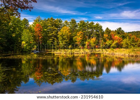 Early autumn color at North Pond, near Belfast, Maine. - stock photo