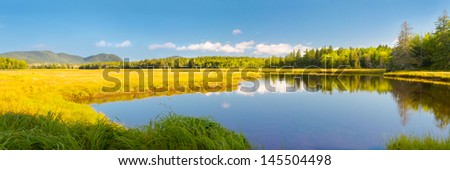 Early Autumn in Bass Harbor Marsh, Acadia National Park, Maine. - stock photo