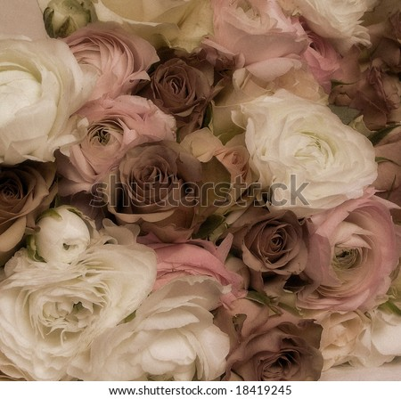 early color photographic reproduction showing an extraordinary abundant and beautiful wedding bouquet - stock photo