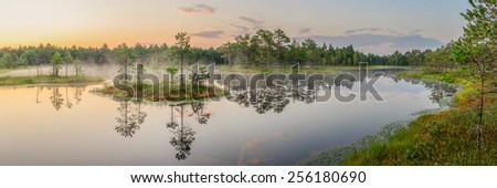 Early morning by the bog lake. - stock photo