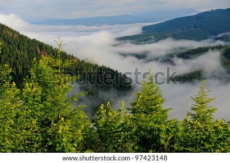 Early morning fog and cloud mountain valley landscape. Ukraine, Karpaty.