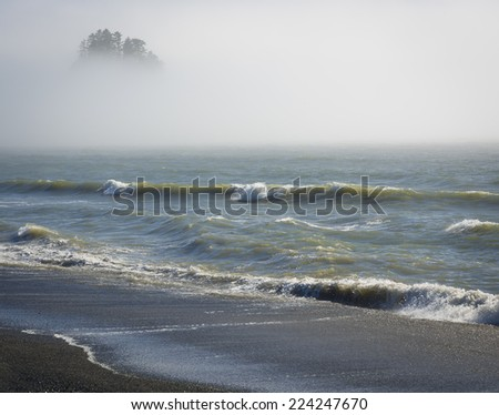 Early morning fog at Rialto Beach