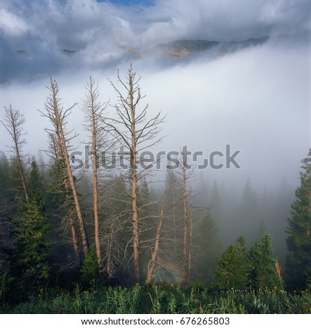 Early morning fog in The Never Summer Range, Rocky Mountain National Park, Colorado