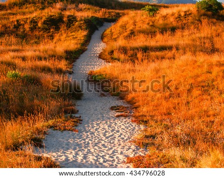 Early morning golden glow path through sand dunes at Papamoa beach Mount Maunganui New Zealand
