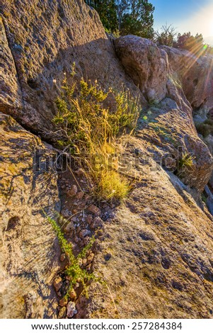 Early morning golden light bathing the side of a steep cliff in the northern New Mexico desert - stock photo