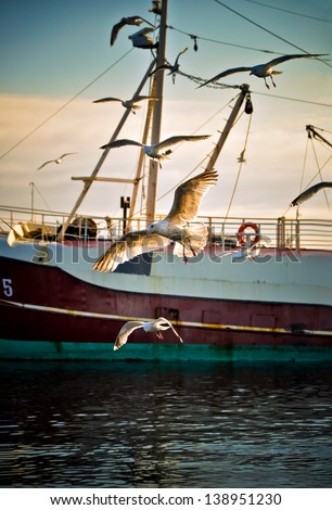Early morning in the harbour when the fishingboats arrive - stock photo