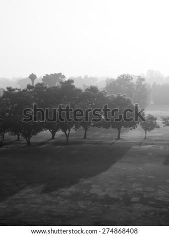 Early morning landscape in fog Monochrome tone - stock photo
