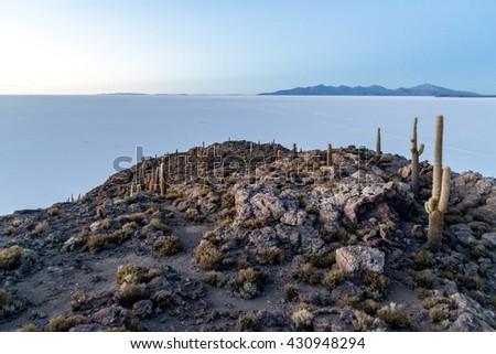 Early morning on Isla Incahuasi (Isla del Pescado) in the middle of the world's biggest salt plain Salar de Uyuni, Bolivia. Island is covered in Trichoreus cactus. - stock photo