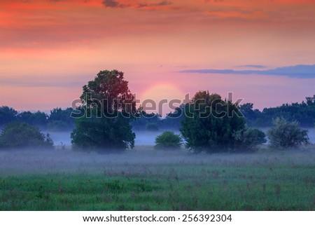 Early morning scene in steppe - stock photo