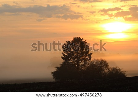 Early morning sun over the rural countryside