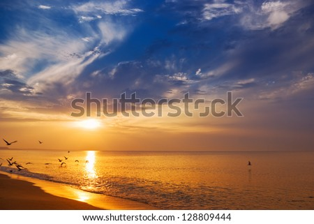 Early morning sunrise over the sea and a birds - stock photo