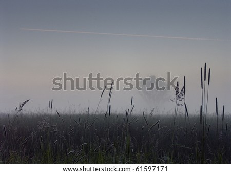 Early morning sunrise with mist on the field