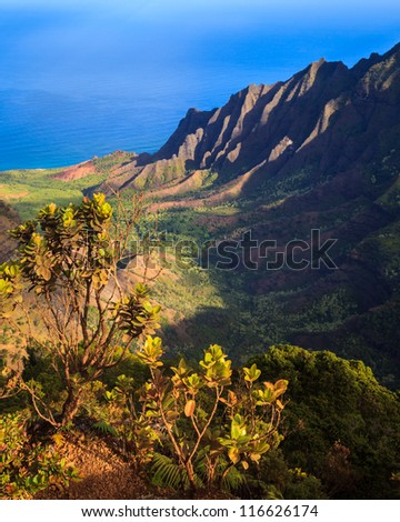 Early morning view of the Kalalau Valley at the Na Pali Coast, Kauai. - stock photo