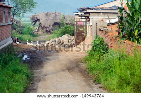 village scene in a early morning You are here: home / essay on the village scene early in the morning, creative writing draft, hire someone to help with business plan.