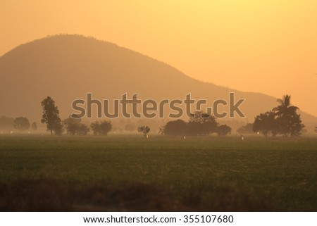 Early morning with a countryside sunrise over a field