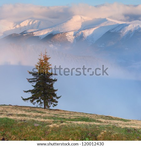 Early spring in the mountains. Sunrise - stock photo