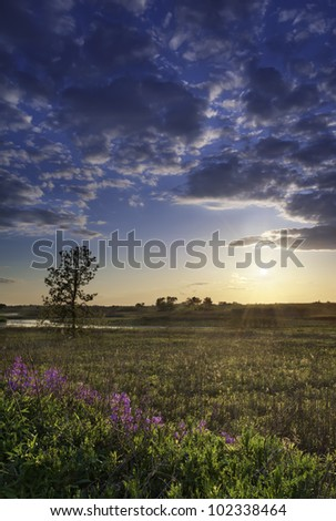 Early Spring Sunset over an open field in a early spring at Illinois. - stock photo