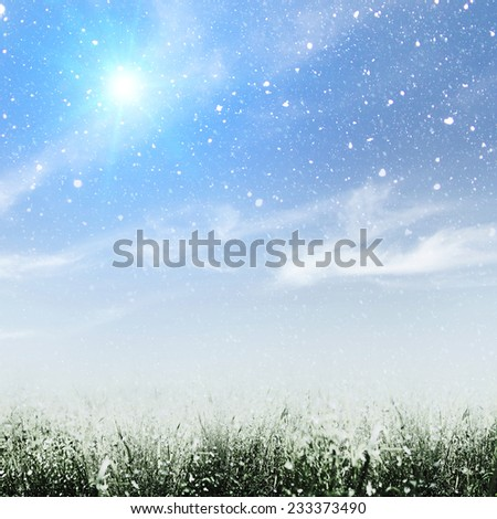 Early winter on the meadow, abstract environmental backgrounds - stock photo