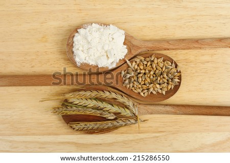 Ears and grains of barley and flour in wooden spoons on a wooden board - stock photo