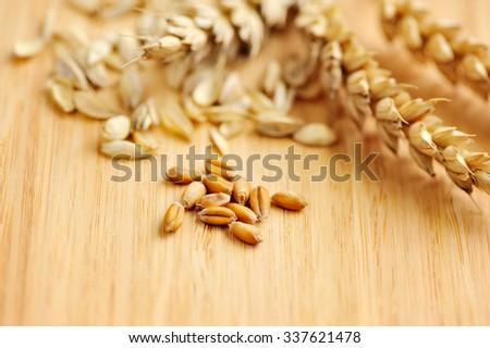 Ears of wheat on wooden board - stock photo