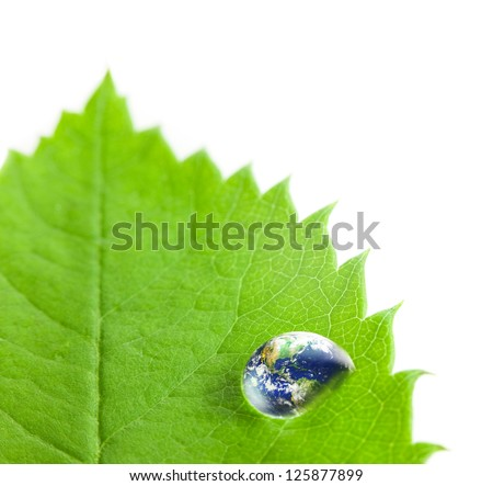 Earth  Big Water Drop on a Green Leaf  / white background / Eco concept / Super Macro shot Earth photo from  http://visibleearth.nasa.gov