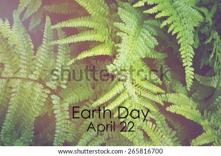 Earth Day, April 22, Concept with image of green ferns with applied retro vintage style filters and added light stream. - stock photo
