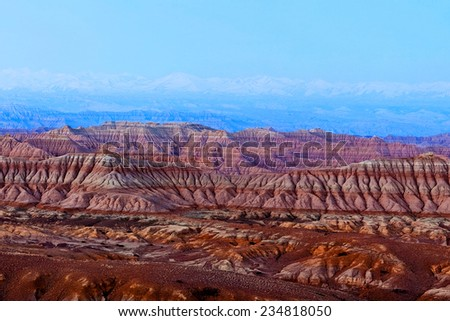 Earth Forest Geopark in Zanda County, Tibetan Autonomus Region of China. It is the largest and most distinctive clay forest that was formed due to the air-slaking of the tertiary stratum. - stock photo