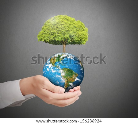 earth in human the hand  - stock photo