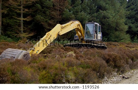 Earth moving machinery laying idle in the forest
