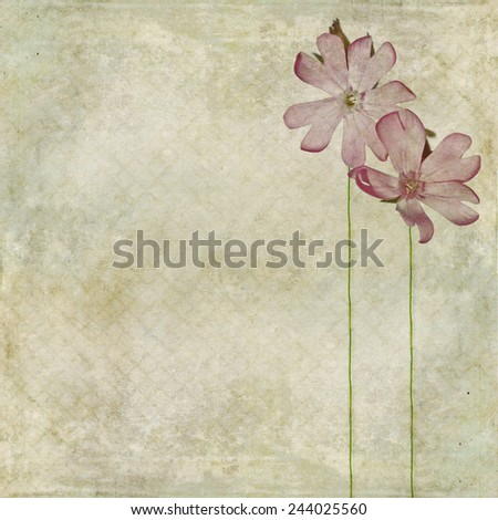 Earthy floral background image - stock photo