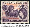 EAST AFRICAN POSTAL UNION - CIRCA 1955: A stamp printed in East African postal Union (Kenya, Uganda, Tanganyika) shows African elephant with spears and shield (Loxodonta africana), circa 1955 - stock photo