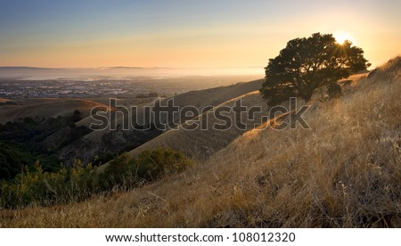 East Bay (San Francisco Bay Area) from above in the hills at sunset in summer - stock photo
