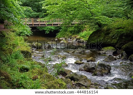 East Lyn River, Lynmouth, Exmoor, Devon, England. White water in the river and wooden bridge above. - stock photo