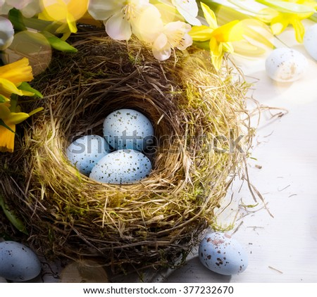 Easter background with Easter eggs on the nest