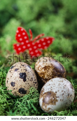 Easter background with quail eggs on green grass