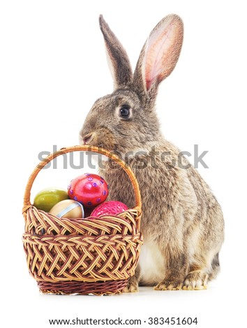 Easter Bunny with colored eggs in the basket isolated on a white background. - stock photo