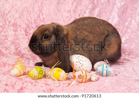 Easter bunny with eggs on pink background - stock photo