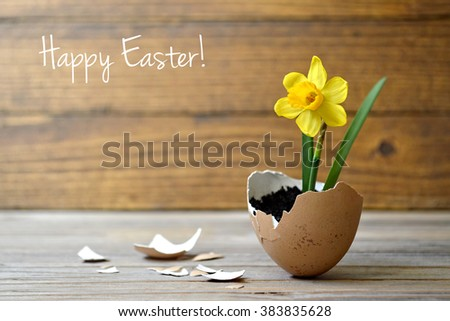 Easter card: Spring flowers in eggshell on wooden table - stock photo