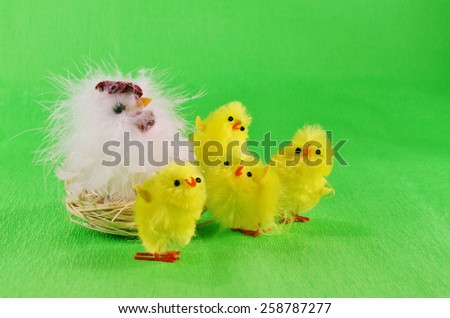 Easter chicks and mother hen  /  Yellow, fluffy Easter chicks with their mother hen.