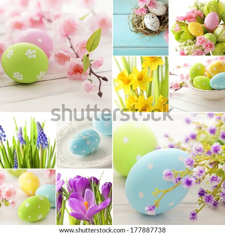 Easter collage. easter eggs and spring flowers - stock photo