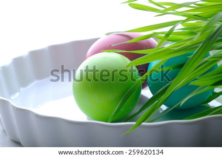 easter color eggs  - stock photo