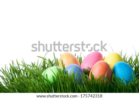 easter color eggs on green grass over white background - stock photo