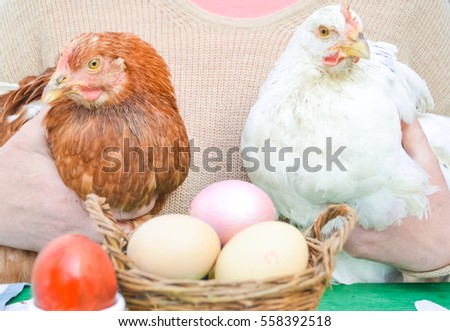 Easter composition.girl holding chickens, eggs, flowers