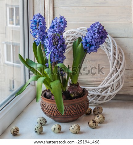 Easter composition on the windowsill of hyacinths and eggs - stock photo