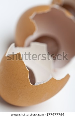 Easter Cracked Egg Shells